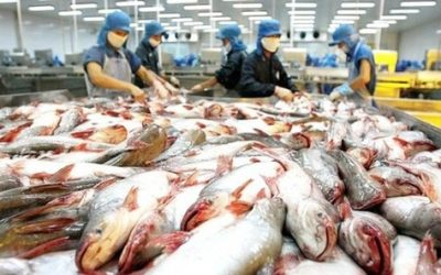 Vietnam Takes Advantage of U.S.-China Trade War
