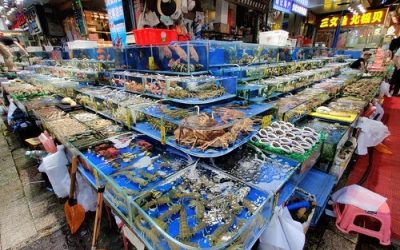 China's largest seafood market back in business