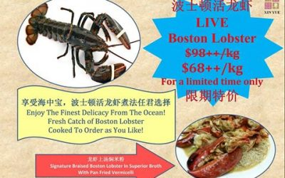 Boston Lobsters a Hit at Restaurants and Recent Festivals in China